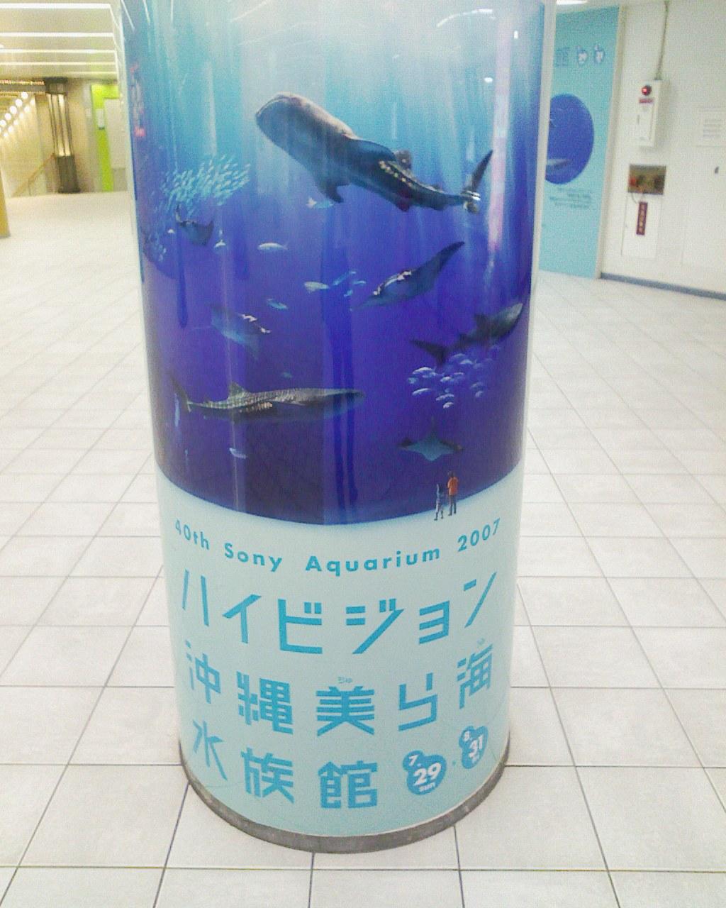 沖縄美ら海水族館に行ってきました